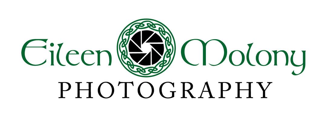 EMPhotoLogo_2c-01
